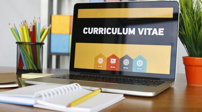 apprentice winner curriculum vitae