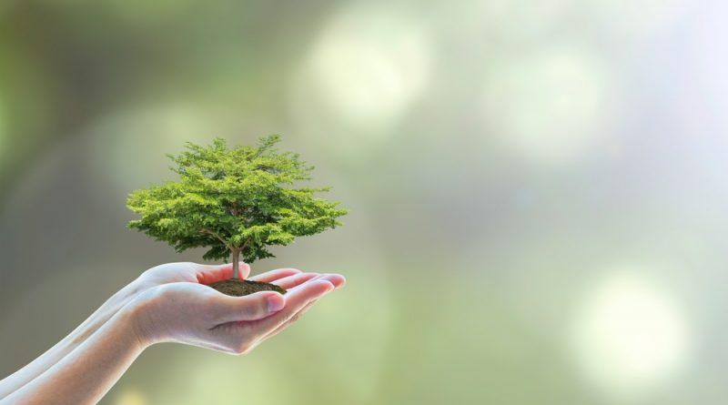 Making our professional lives more environmentally friendly